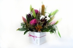 Florist's Choice Domed Box Arrangement