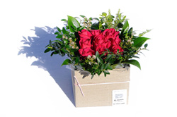 Rose Head Box